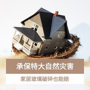 华安满堂福家庭财产保险(B款1年期)